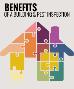 Benefits of a Building and Pest Inspection